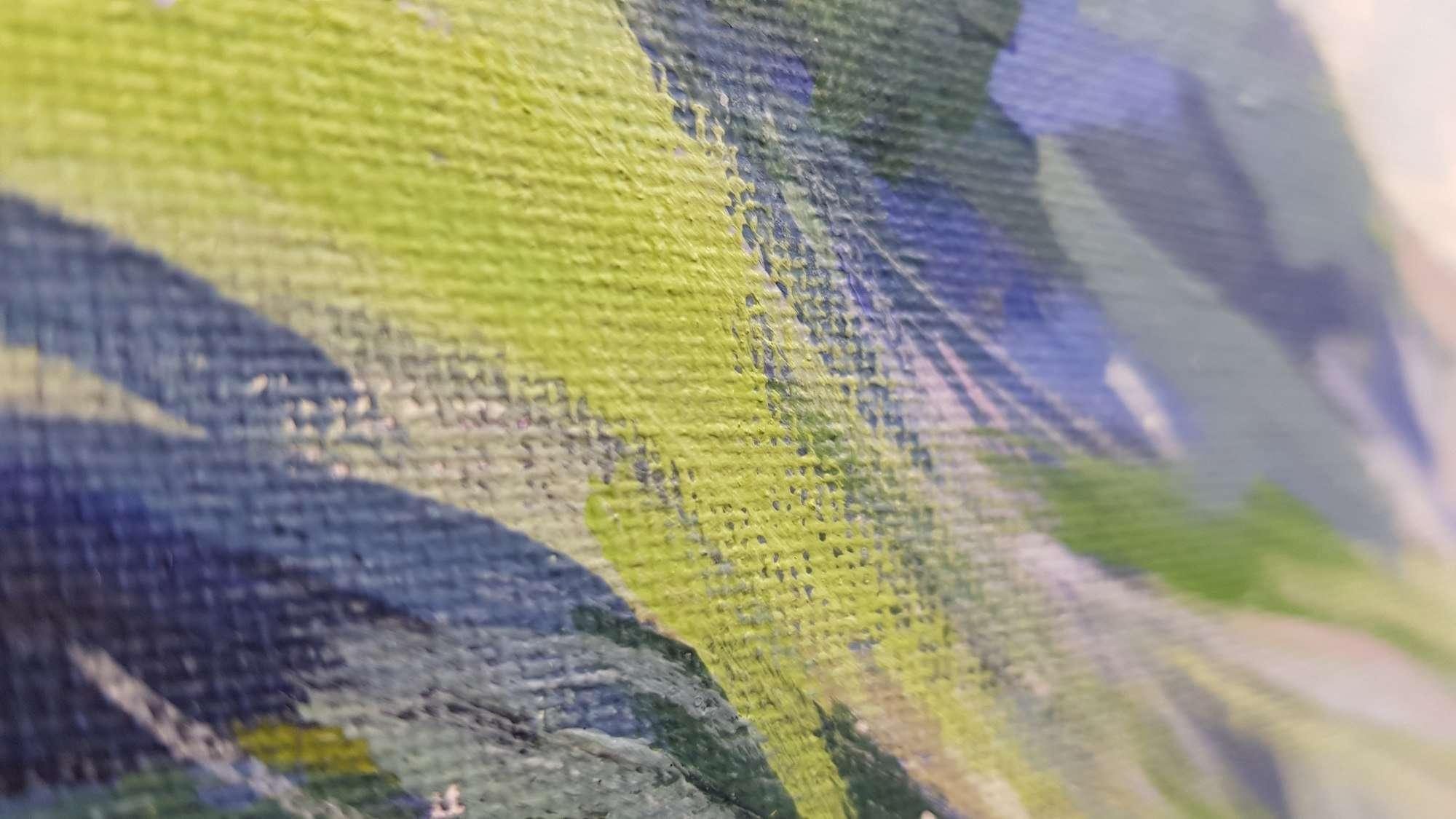 Mickleden Lake District detail 02